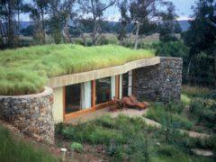 Qu'est-ce qu'une toiture végétalisée (ou green roof) ?